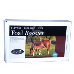 Foal Booster