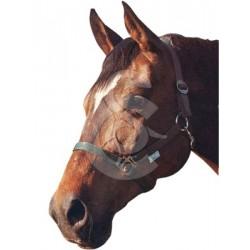 Licol Classic en nylon pour chevaux