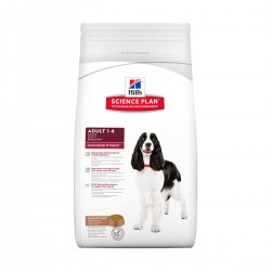 Canine Adult Agneau-riz Forme