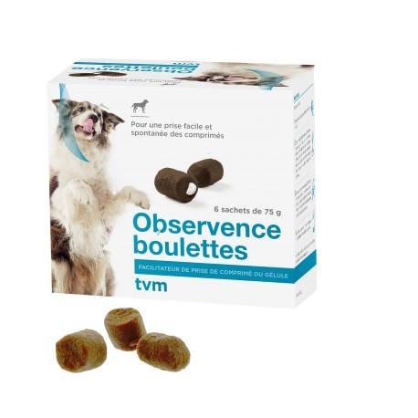 Observence Boulettes