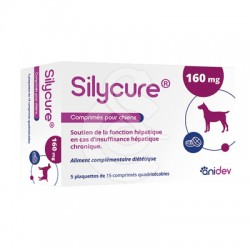 Silycure 160 Mg Chien