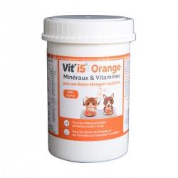 Vit'i5 Orange Poudre