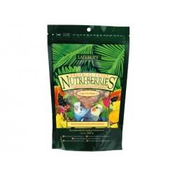 Nutri-Berries tropical fruit parakeet & cockatiel