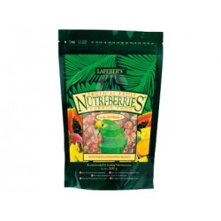 Nutri-Berries tropical fruit parrot