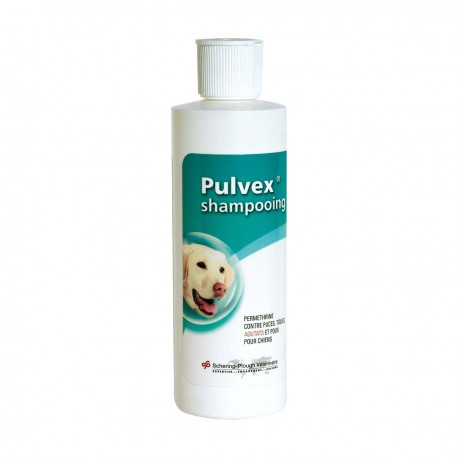 Pulvex Shampooing Chien