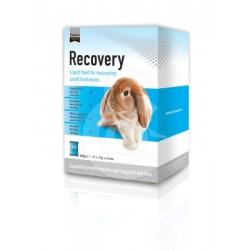 Recovery (Petit herbivore)