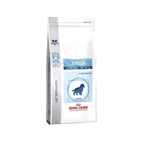 VET CARE NUTRITION JUNIOR LARGE DOG